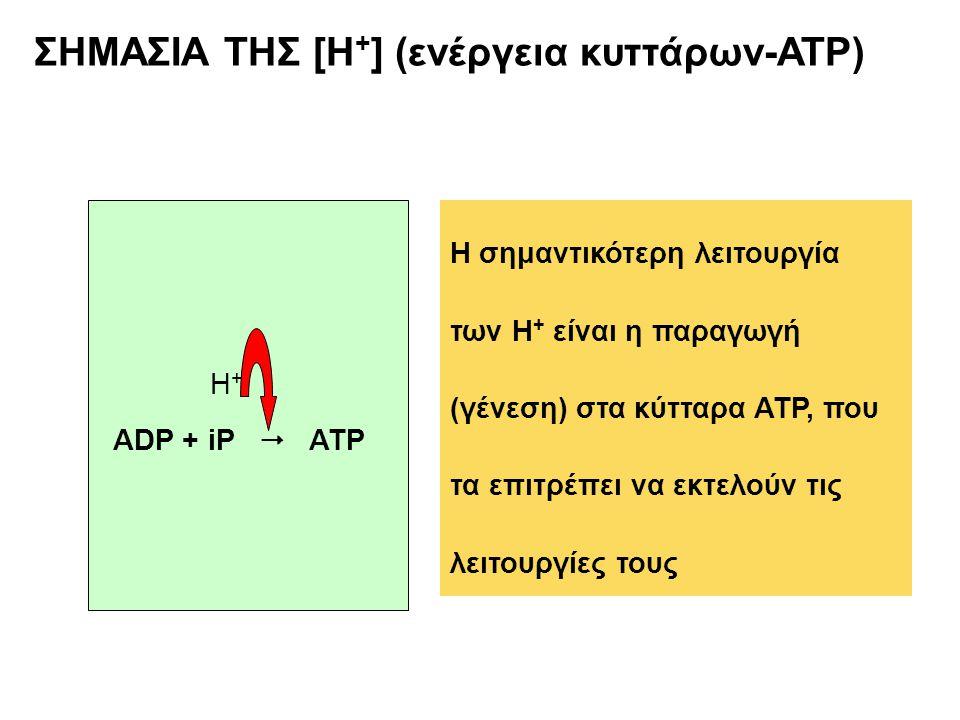 ΣΗΜΑΣΙΑ ΤΗΣ [Η+] (ενέργεια κυττάρων-ATP)